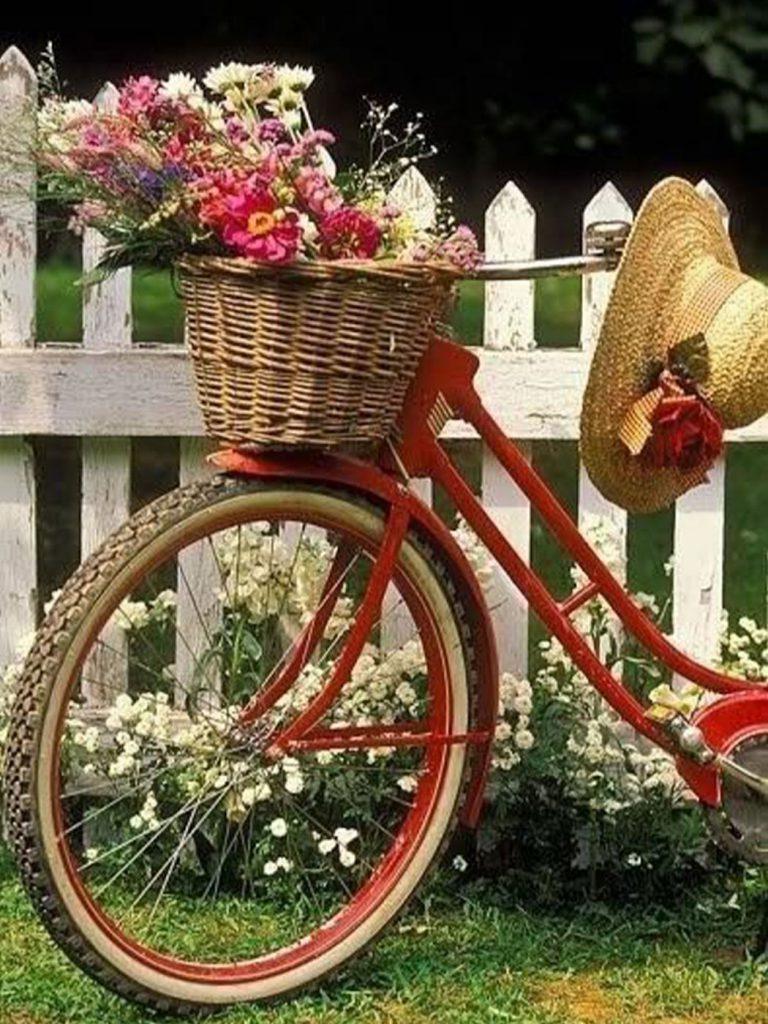 régi kerékpár virágtartó